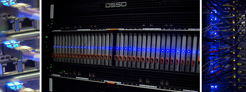 Wrangler Supercomputer Speeds through Big Data