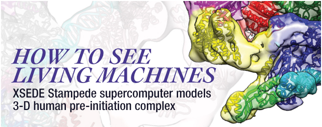 Multi-Colored Model with title of How To See Living Machines