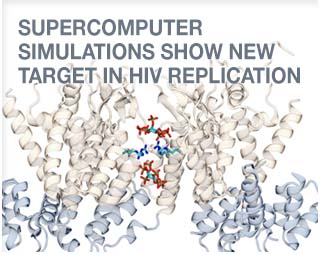 SUPERCOMPUTER SIMULATIONS SHOW NEW TARGET IN HIV-1 REPLICATION